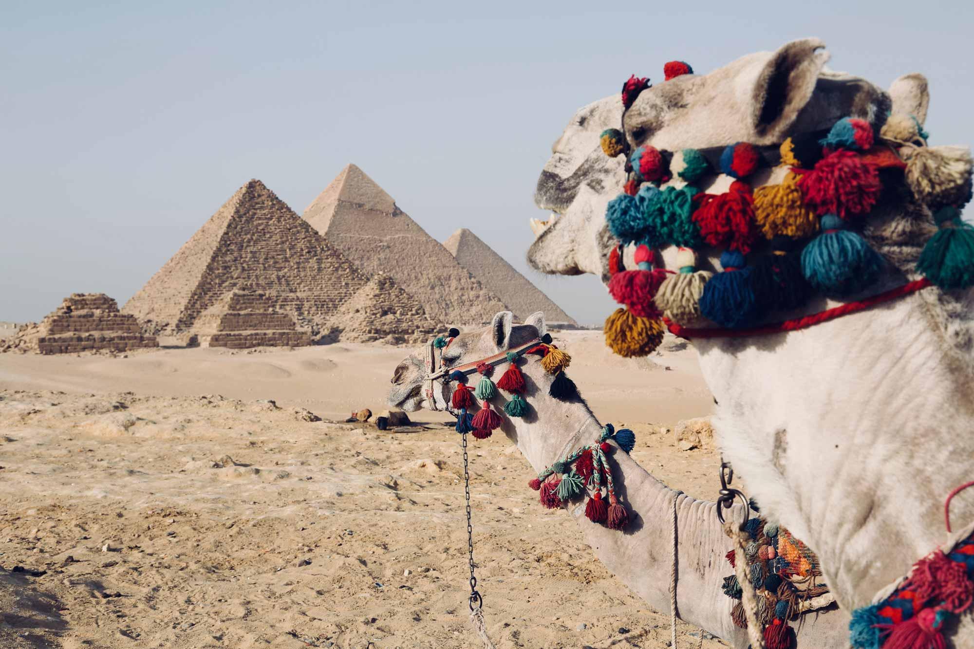 Ką parsivežti iš Egipto